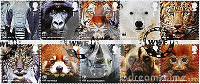 Ten stamps of WWF with endangered animals looking at you