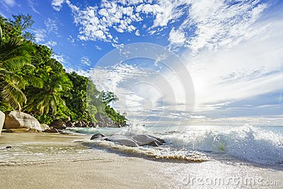 Paradise tropical beach with rocks,palm trees and turquoise wate
