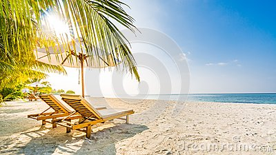 Summer travel destination background. Summer beach scene, sun beds sun umbrella and palm trees