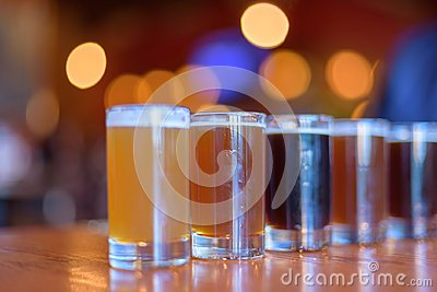 Variety of beer samples lined up for a tasting