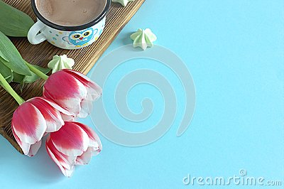 Red tulip white white border on blue background cacao cup marshmallow.