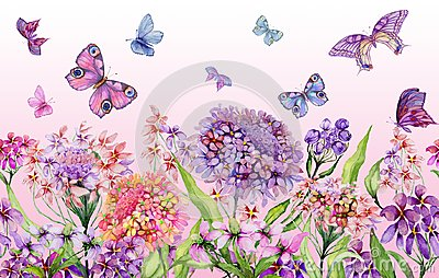 Summer wide banner. Beautiful vivid iberis flowers and colorful butterflies on pink background. Horizontal template.