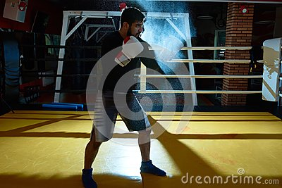 Tough Fighter in Ring
