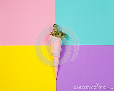 Minimal fashion Stillife. Trendy Bright Colors. Green cactus of ice cream on colorful background.