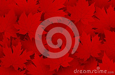 Canada day design of red maple leaves background