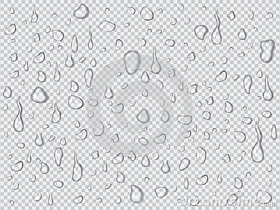 Vector set of realistic water drops and splash different sizes on a transparent background, condensation of rain, illustration.