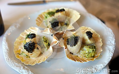 Escallops with caviar in special sauce premium meal, luxury meal unique cuisine in VIP gastronomy restaurant with world class chef
