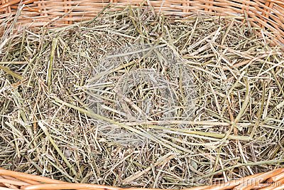 Dry hay in the basket