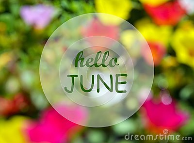 Hello June.Welcoming card with text on natural blurred floral background.Summertime concept.