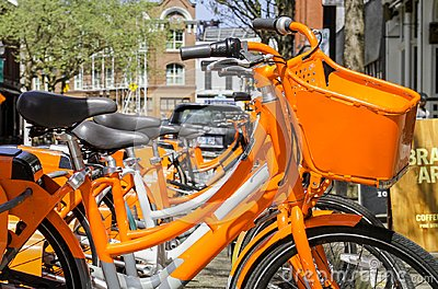 Orange Bicycle Rentals in the City