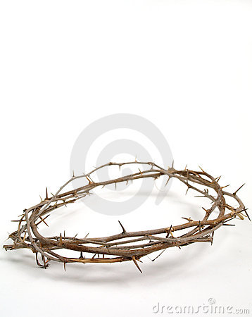 Jesus' crown of thorn