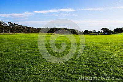 Green lawn  at Margam country park grounds, Whales