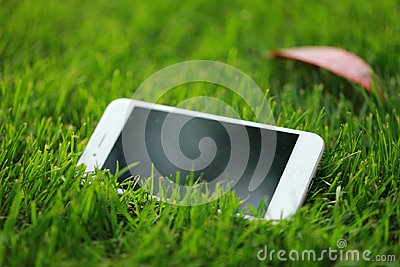 A white smart phone cellphone on green grass lawn in summer spring park garden at sunny day