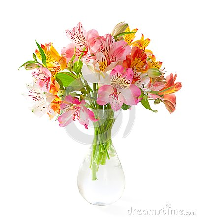 Bouquet of colorful Alstroemeria flowers in a transparent glass vase isolated on white background