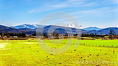 Farmland near the Matsqui at the towns of Abbotsford and Mission in British Columbia, Canada