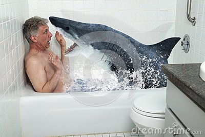 Funny Man, Tub, Bathtub, Shark, Bathing