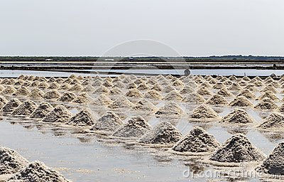 Raw salt or pile of salt from sea water in evaporation; ponds at