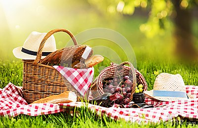 Picnic on a Sunny Day