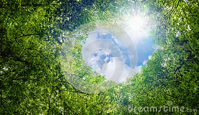 Green leaves background, blue sky heart shape cloud ecology concept idea eco love symbol background abstract