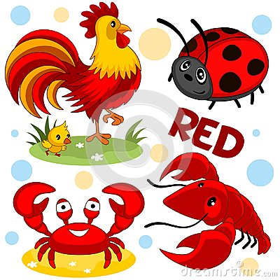 stock image of wild animals are red.