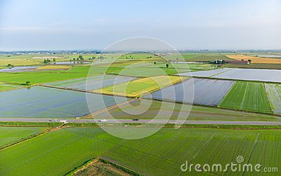 Aerial: rice paddies, flooded cultivated fields farmland rural italian countryside, agriculture occupation, sprintime in Piedmont,