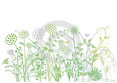 Grasses and herbs