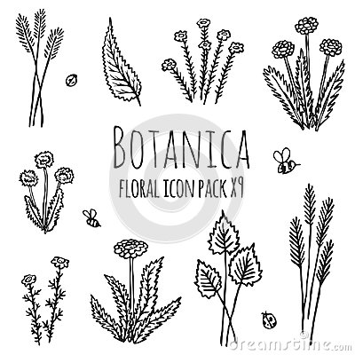 Botanica floral - stylized nine items monochrome black icon set consisting of plants, flowers and insects