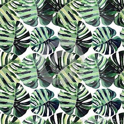 Bright beautiful green herbal tropical wonderful hawaii floral summer pattern of a tropic palm leaves watercolor