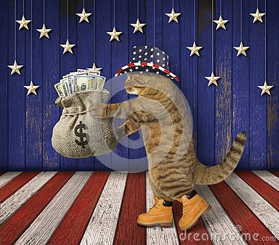 Cat patriot with a sack of money 2