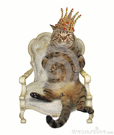 Cat in crown on throne