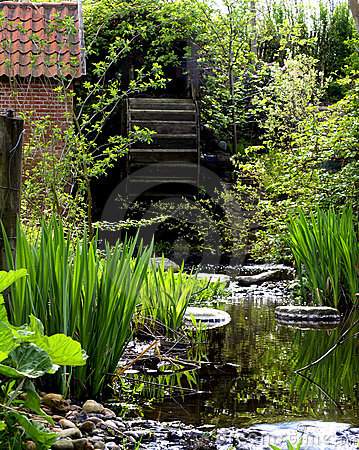 Garden with Water mill wheel