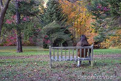 Sitting on the Bench