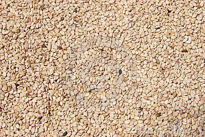 Raw Hulled Sesame Seeds