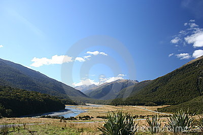 In the valley, New Zealand