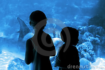 Children in the aquarium