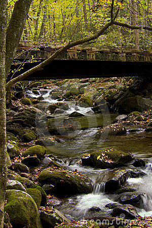 Bridge in Roaring Forks