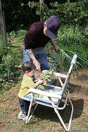 Boy Helping Grandpa In The Garden