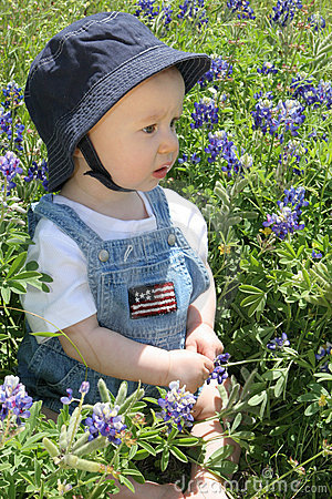 Baby in Bluebonnets3