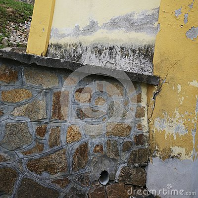 Wall with dampness