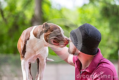 Pet owner receiving a kiss lick from his pet dog, loving affectionate bond