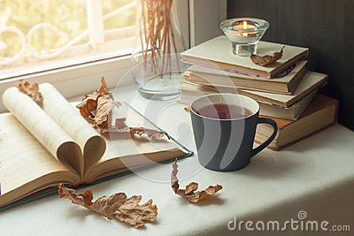 Concept of autumn reading time and romantic, Warm, cozy window seat opened book, light through shutters, rustic style home decor