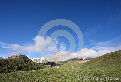 Green grassy hills under snow capped mountains of haute provence near col de vars in france