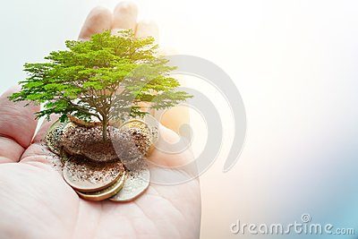 Pay money donation for green eco saving environment and earth ecology sustainable