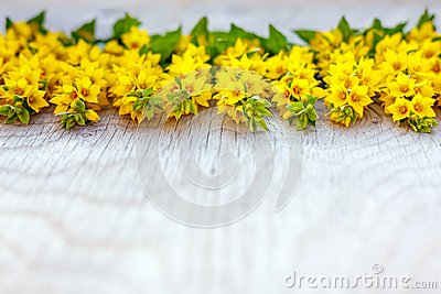 Wooden rustic background woth yellow flowers on it.