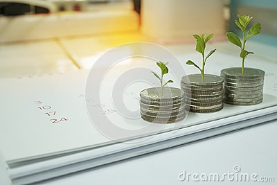 Coin with tree in mutual funds concept.