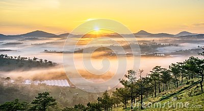Da lat, lam dong, viet nam- feb 12, 2017: beautyful landscape of da lat city, a small vietnamese pagoda in fog and the pine hill