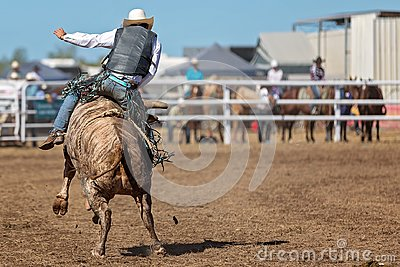 Bucking Bull Riding At A Country Rodeo