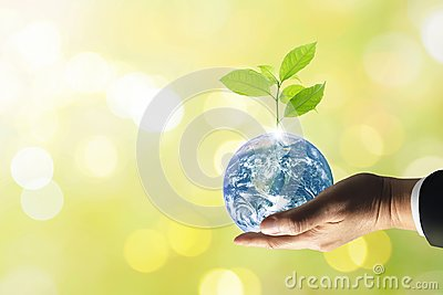 Planet earth with beautiful freshness growth tree.