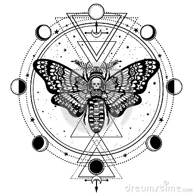 Mystical drawing: Moth Dead Head, circle of a phase of the moon.