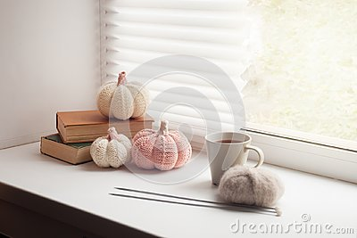 Cosy and soft winter, autumn, fall background, knitted decor and books on an windowsill. Christmas, thanksgiving holidays at home